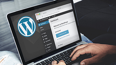Установка wordpress на openserver